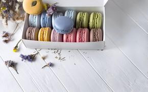 Картинка colorful, box, flowers, french, macaron, макаруны