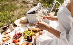 Картинка лето, девушка, вино, еда, бокалы, пикник