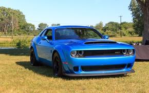 Картинка Dodge, Challenger, 2018, SRT, Demon