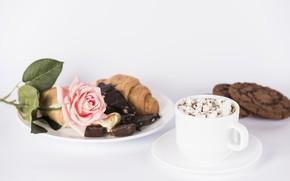 Картинка роза, Love, печенье, конфеты, Coffee, горячий шоколад, Valentine