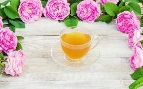 Картинка цветы, розы, лепестки, розовые, wood, pink, flowers, cup, petals, roses, tea, чашка чая