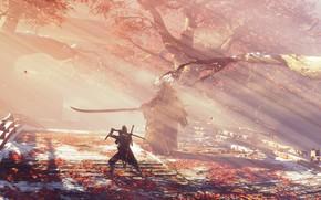 Картинка листья, туман, игра, япония, волк, меч, sword, art, экшен, протез, поединок, wolf, samurai, синоби, from …