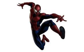 Картинка Marvel, человек паук, hero, spider man