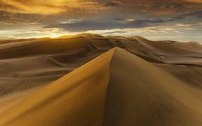 Обои desert, sunset, sand