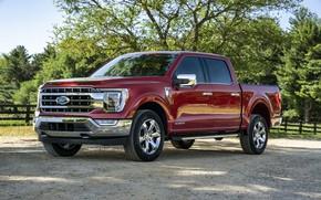 Картинка красный, Ford, пикап, F-150, 2020, 2021, F-series
