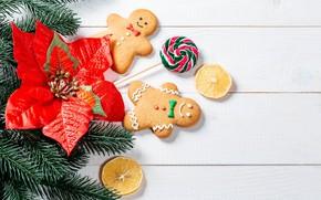 Картинка цветок, ветки, печенье, Рождество, Новый год, леденцы, хвоя
