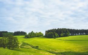 Картинка дорога, зелень, поле, лес, небо, трава, облака, деревья, холмы, луг, простор