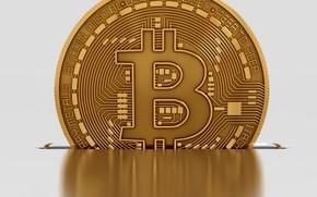 Картинка лого, валюта, bitcoin, биткоин, btc