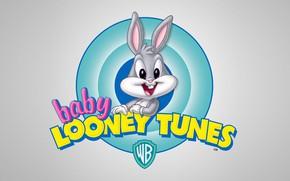 Картинка Кролик, Маленький, Мультфильм, Looney Tunes, Багз Банни, Bugs Bunny, Кролик Багз, baby Looney Tunes
