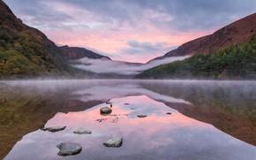 Картинка осень, лес, туман, отражение, водоем