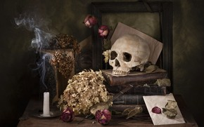 Картинка цветы, старина, темный фон, стол, дым, книги, череп, розы, свеча, рамка, сухие, натюрморт, предметы, конверт, …