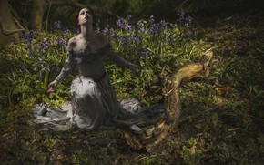 Картинка лес, девушка, цветы, бревно