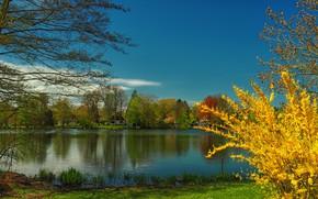 Картинка небо, солнце, деревья, река, Германия, домики