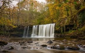 Картинка осень, лес, деревья, река, Англия, водопад, England, Уэльс, Wales, Brecon Beacons National Park, Национальный парк …