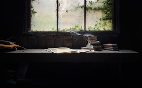 Картинка книги, паутина, пыль, окно, натурализм