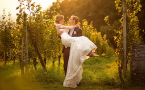 Картинка фото, платье, виноград, влюбленные, невеста, свадьба, жених, Miki Macovei