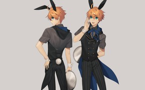 Картинка кролик, парень, зайка, поднос, Fanart, официант, Fate/Grand Order, Pixiv, Fanart From Pixiv, Saber (Fate/Prototype)