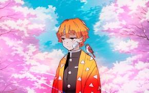 Картинка парень, живопись, Клинок Рассекающий Демонов, Zenitsu Agatsuma, Demon Slayer Kimetsu No Yaiba