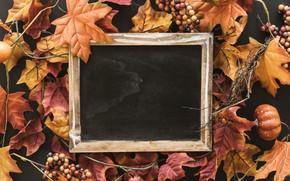 Картинка осень, листья, фон, дерево, доски, colorful, wood, background, autumn, leaves, осенние, maple