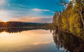 Картинка осень, деревья, отражение, берег, березы, водоем
