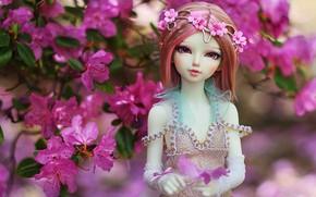 Картинка цветы, игрушка, кукла
