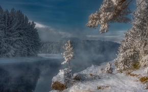 Картинка зима, снег, деревья, река, мороз, Россия, Сибирь, Енисей, Александр Макеев