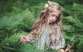 Картинка природа, заросли, девочка, ребёнок, Тувиста Марина