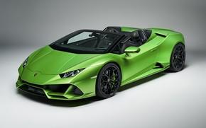 Картинка Lamborghini, Spyder, Evo, Huracan, 2019, Lamborghini Huracan Evo