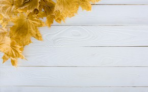 Картинка осень, листья, фон, дерево, доски, wood, background, autumn, leaves, осенние, maple
