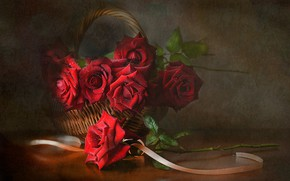 Картинка цветы, корзина, розы, лента, натюрморт