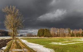 Картинка дорога, поле, снег, природа