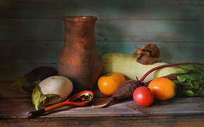 Картинка баклажаны, ложка, посуда, кувшин, натюрморт, овощи, томаты, свекла, кабачок, улитка Ахатина