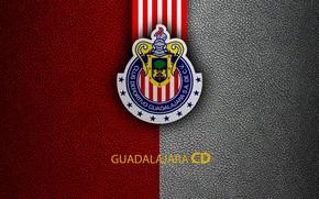 Картинка wallpaper, sport, logo, football, CD Guadalajara Chivas