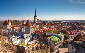Обои Tallinn, Эстония, Таллин, Estonia
