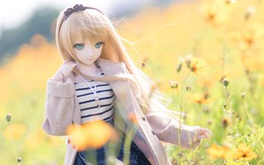 Картинка цветы, кукла, пальто