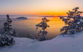 Картинка зима, солнце, снег, деревья, пейзаж, природа, озеро, рассвет, утро, Ладожское озеро, Карелия, Ладога, Vaschenkov Pavel, …
