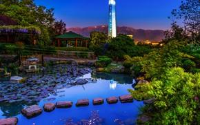 Картинка зелень, небо, деревья, пейзаж, горы, огни, пруд, камни, башня, вечер, сад, беседка, кусты, Чили, Santiago, …