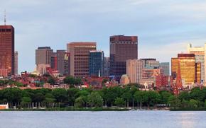 Обои деревья, берег, здания, дома, яхты, панорама, залив, США, Бостон