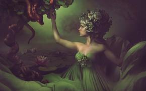 Картинка девушка, змей, фотоарт