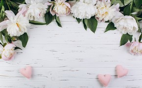 Картинка цветы, лепестки, сердечки, пионы