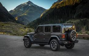 Обои растительность, склоны, вид сбоку, 2018, Jeep, тёмно-серый, Wrangler Sahara