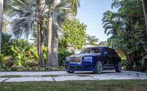 Картинка Rolls Royce, Blue, SUV, Silver, Palm, Cullinan