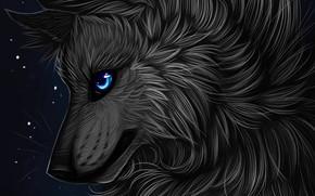 Картинка профиль, myarukawolf, by myarukawolf, чёрный волк