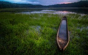 Картинка зелень, лес, лето, небо, трава, облака, озеро, пруд, река, берег, растительность, лодка, вечер, водоем, старая, …