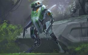 Картинка лес, растительность, робот, scout, аппарат