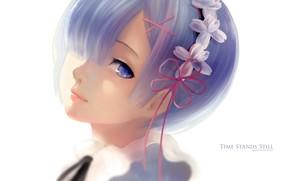 Картинка взгляд, девушка, аниме, арт, Re: Zero kara Hajimeru Isekai Seikatsu
