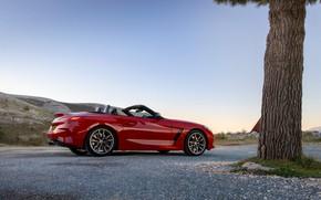Картинка красный, дерево, BMW, родстер, BMW Z4, M40i, Z4, 2019, UK version, G29