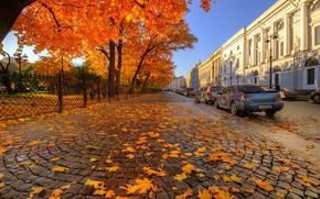 Обои авто, осень, улица, Санкт-Петербург, Ed Gordeev, Гордеев Эдуард