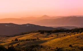 Картинка лес, свет, деревья, горы, туман, рассвет, холмы, утро, дымка