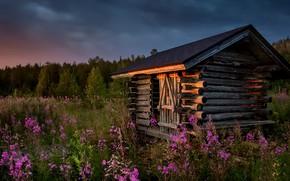 Обои лето, закат, цветы, дом